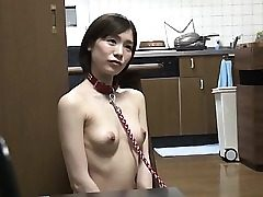 Transformation Pet With Real Estate Suzumura Airi